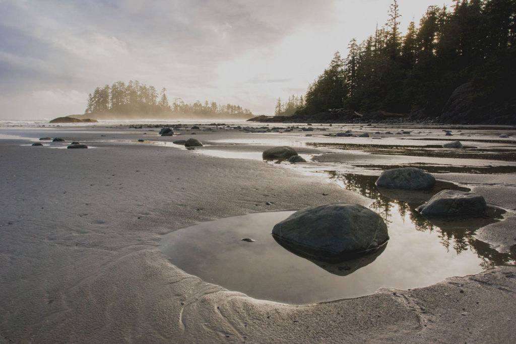 Photo of tide pools and beach on Western Vancouver Island.